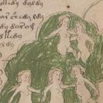 Did Someone Really Just Figure Out How To Read The Mysterious Voynich Manuscript?