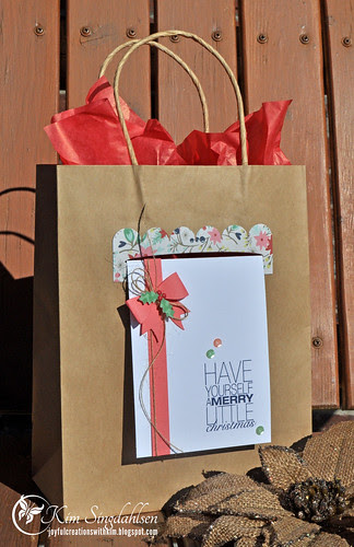 Christmas Bag on Swing