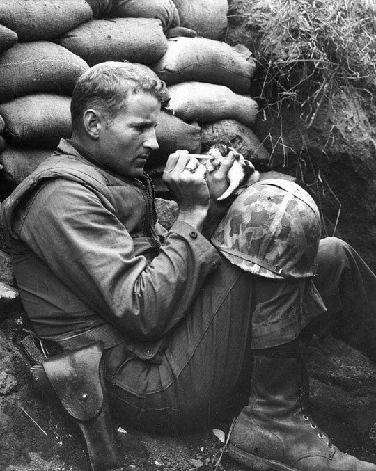 soldier feeding a kitty