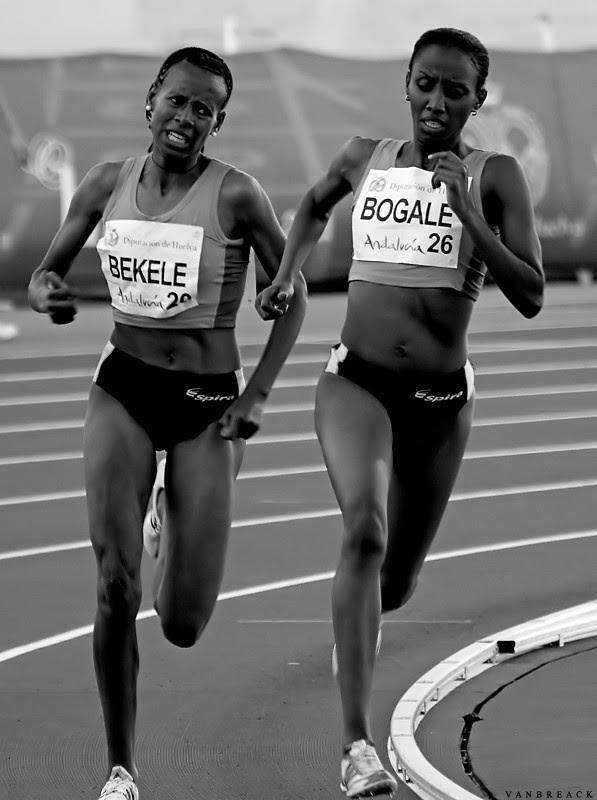Bekele & Bogale