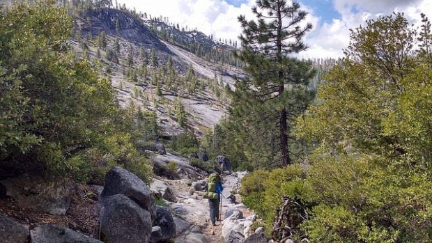 How to Have a Fun-Filled Nature Adventure in California