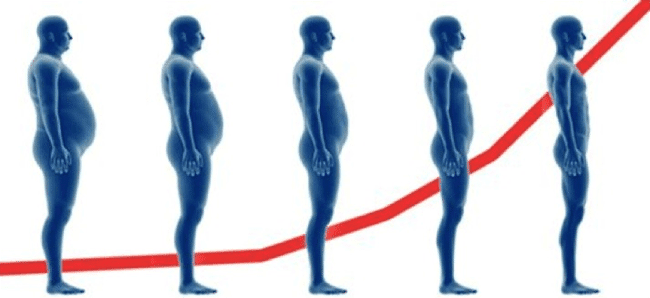 body fat percentage males pictures