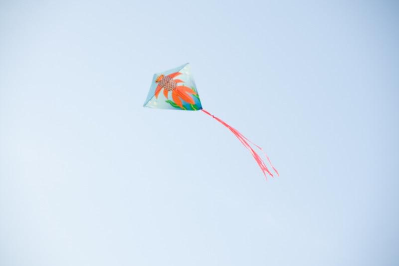 yw-go fly kite-marina barrage-090824-0012.jpg