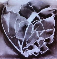 IYTI NoLA 5 - Pure by Dawn Iles