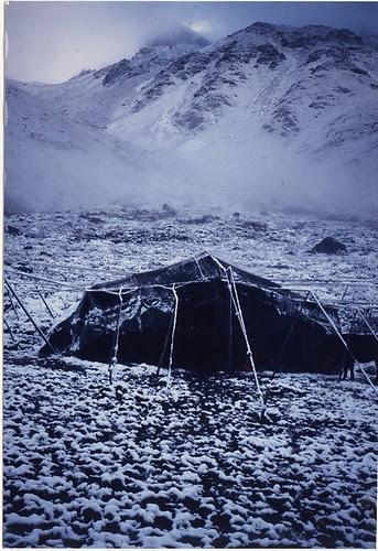 black tent2