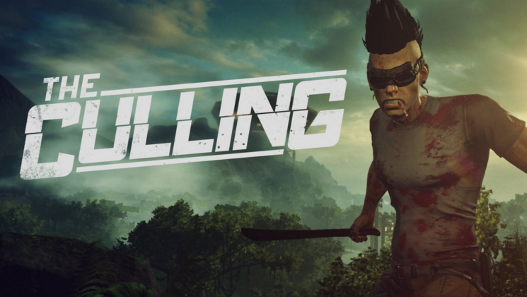 The Culling Errors