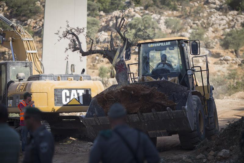 Case per la popolazione Ebraica, demolizioni per quella Palestinese