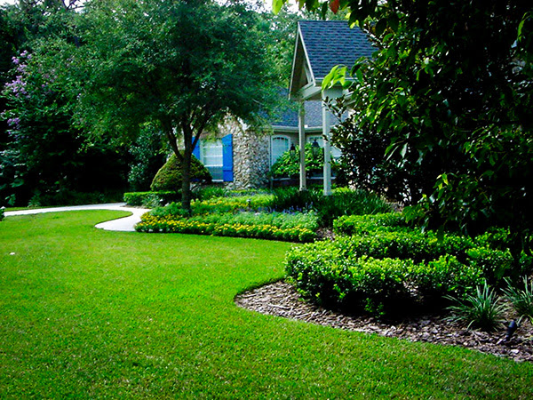 Home Landscaping Ideas Back Yard