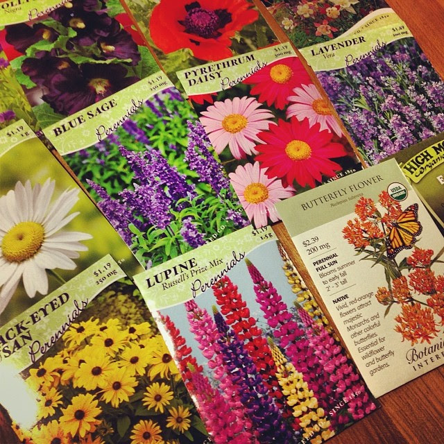 I hope all these seeds bloom exactly like their pictures. #gardenofdisappointment #wintersow  ☀️❄️☀️❄️