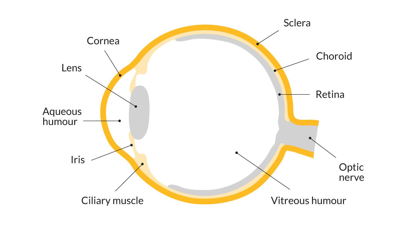 Eye diagram _ V06 1