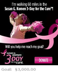 Help me reach my goal for the Susan G. Komen Chicago 3-Day for the Cure!