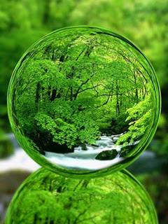 Download 3D Nature View Mobile Wallpaper  Mobile Toones