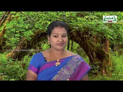 கவிதைப் பேழை Std 8 English The Three Questions Part 02 kalvi TV