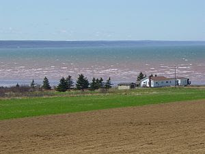 Bay of Fundy in early May.