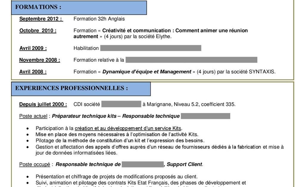resume format  mod u00e8le cv job d u0026 39  u00e9t u00e9