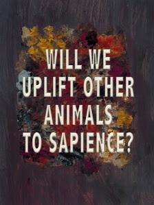 uplift-sapience