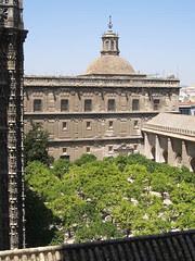 Patio de los Naranjos di Seville Cathedral, Seville, Spain