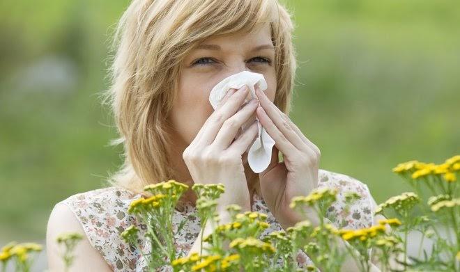 Плохая новость: из-за глобального потепления сезоны аллергии становятся длиннее