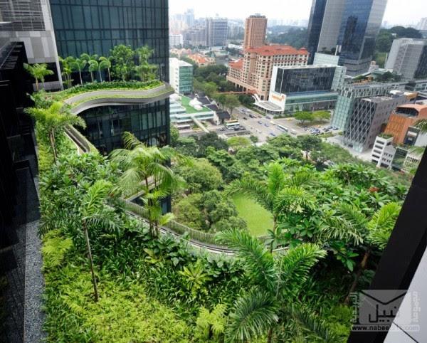 parkroyal-sky-garden-hotel-19