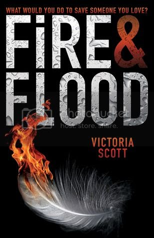 https://www.goodreads.com/book/show/16069167-fire-flood