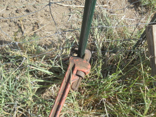 Turning T-Post with Pipe Wrench