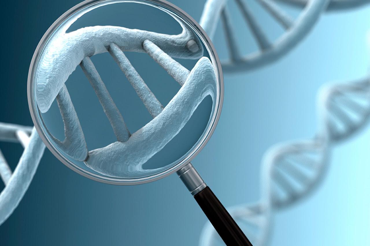 Diagnóstico Genético Pré-implantacional de doenças cromossômicas e monogênicas será debatido durante o XXX Congresso Brasileiro de Genética Médica