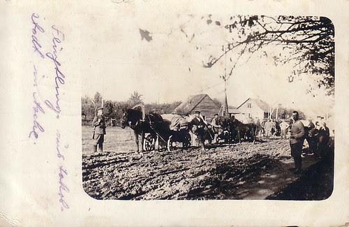 Refugees Jakobstadt  Nov.1917
