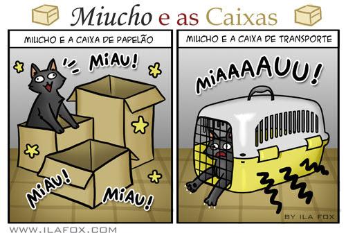 Miucho e caixas, gatos e caixas de transporte, ilustração by ila fox