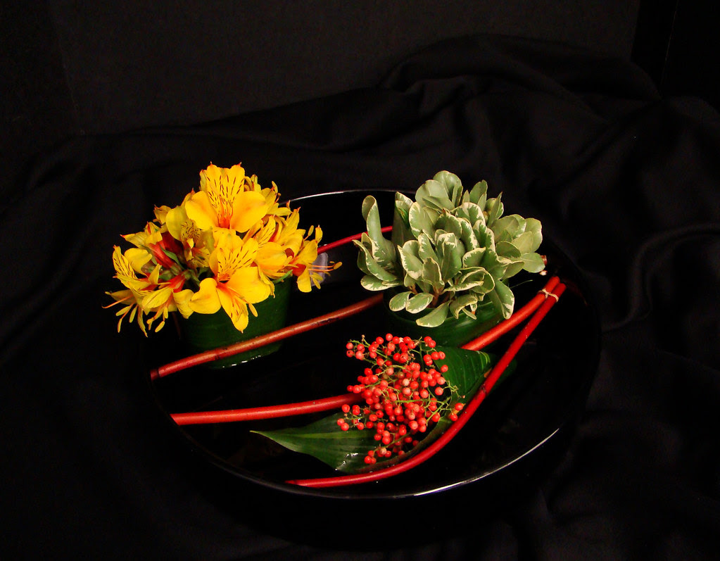 DSC02211 Sushi Flowers