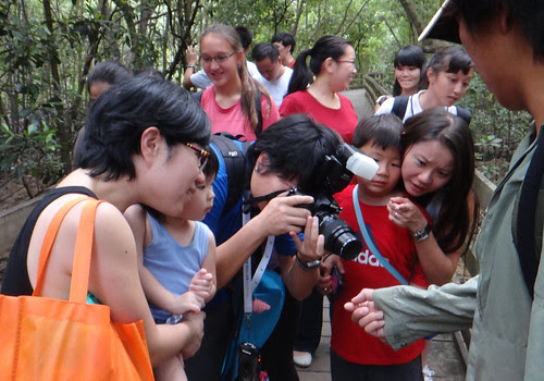 People on a free guided tour of Pasir Ris mangroves by the Naked Hermit Crabs