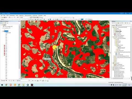 Analysis Water Flood ວິເຄາະ ແລະ ປະເມີນເຂດນ້ຳຖ້ວມ3ເມືອງ, ຈຳພອນ,ສອງຄອນ,ຊົນ...