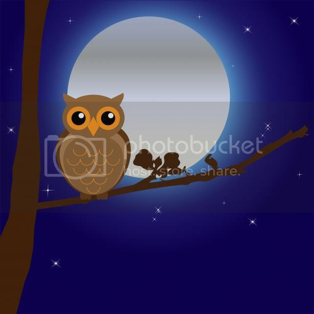 http://www.publicdomainpictures.net/view-image.php?image=35813&picture=owl-by-moonlight