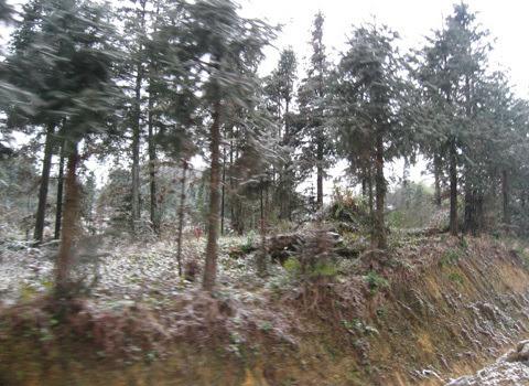 tuyết, Mèo Vạc, nhiệt độ, rét buốt, Hà Giang