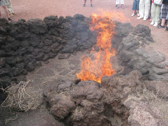 Fuego en Timanfaya