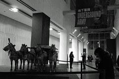 Terracotta Warriors - Hallway