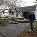 A fallen tree in Fairhaven, Mass. Home insurance policies typically have a provision that stipulates higher deductibles for damage caused by a hurricane.