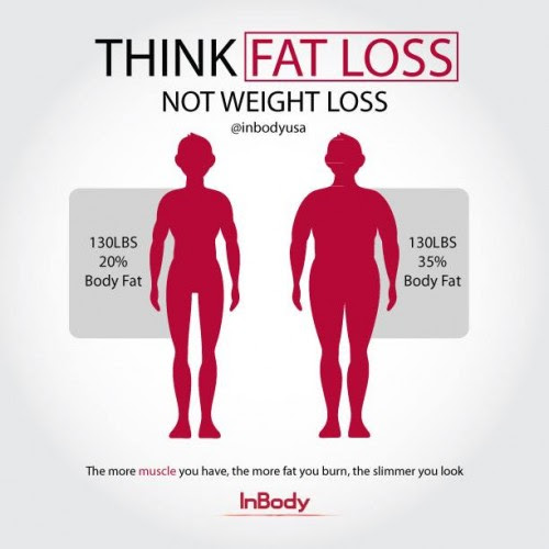 body fat percentage compared