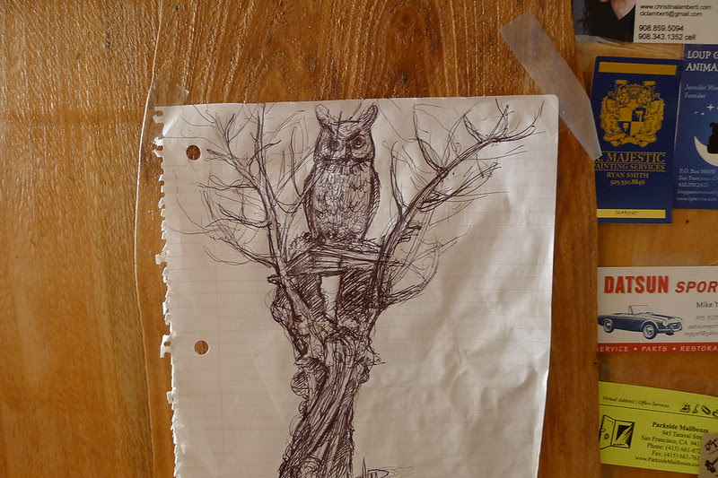 brown owl coffee