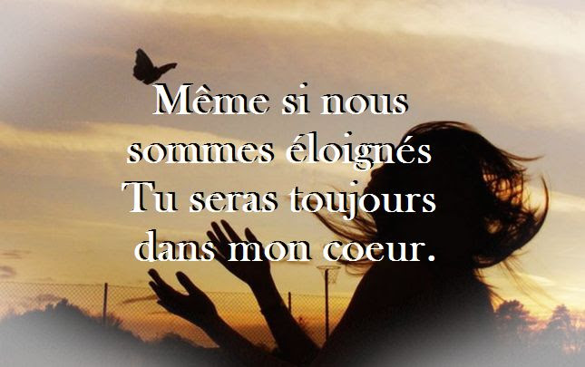 Citation Amour Distance Souffrance