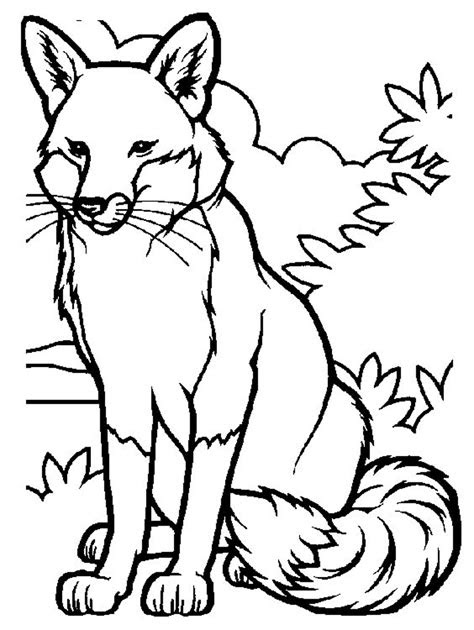 printable fox coloring pages  kids