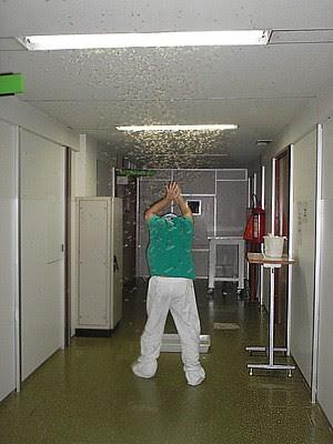 Insetos no corredor do Hospital Dório Silva, na Serra. (Foto: VC no ESTV)