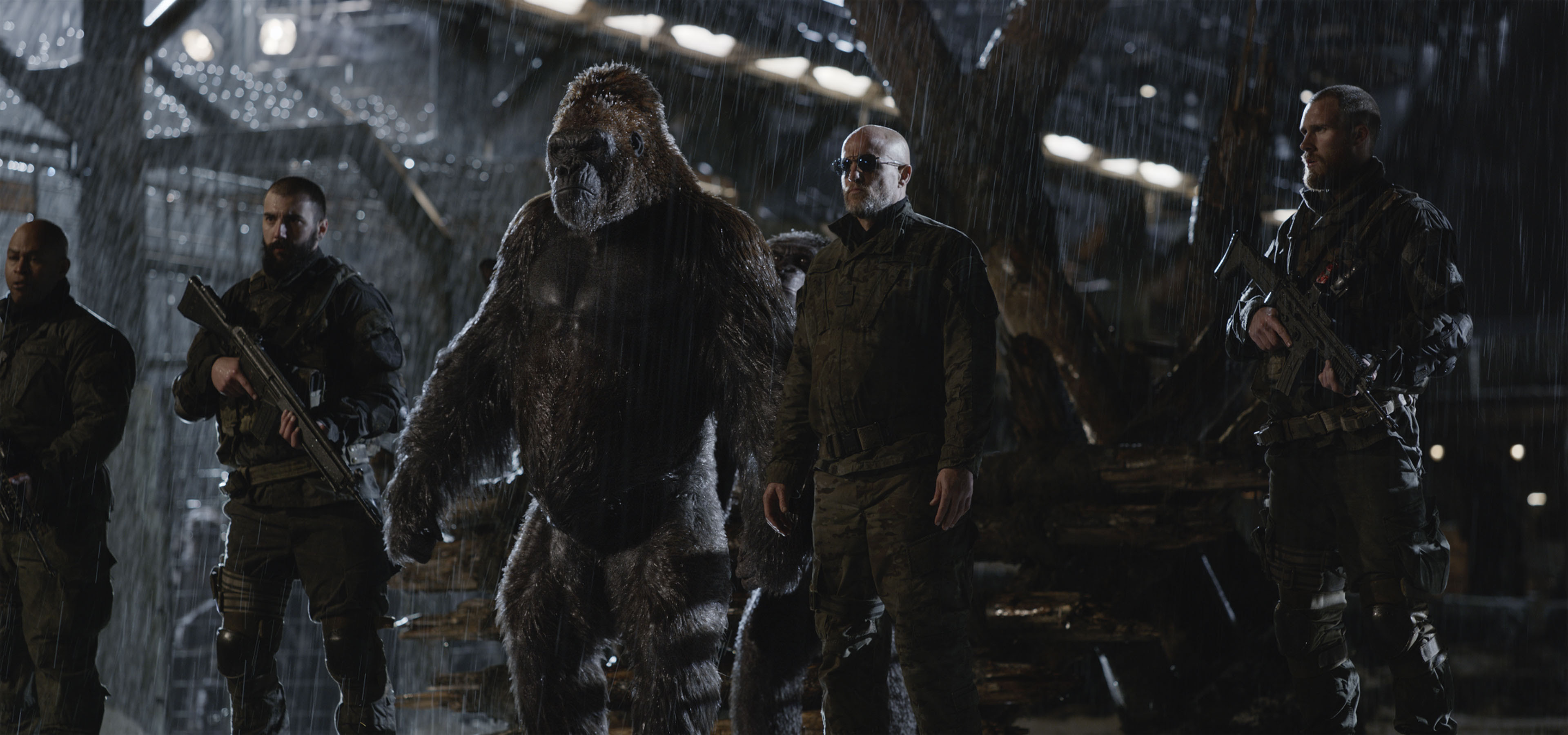 War For The Planet Of The Apes Hd From Gallsource Com Wallpaper