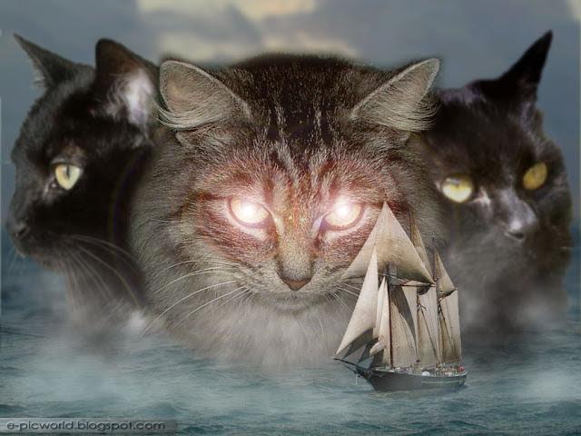 Mystic animalistic wallpaper - cats