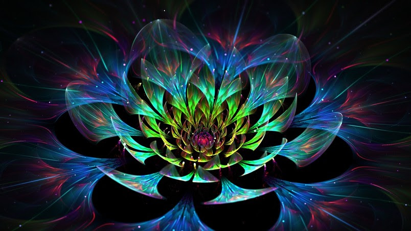 preview_3d lotus flower