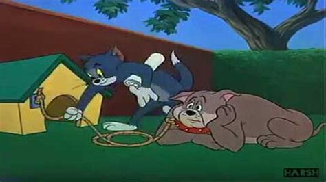tom  jerry funny exam funny status video song video