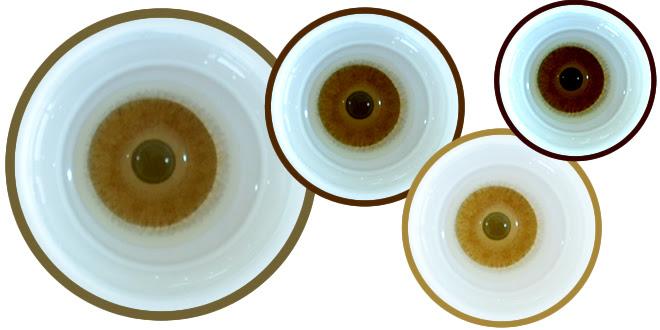 Lens Dünyası Iris Kusurlu Gözlere Yeni Lens Boyama Tekniği