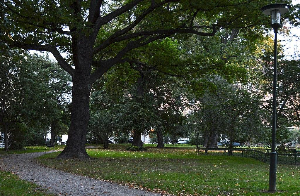 Stureparken 1.jpg