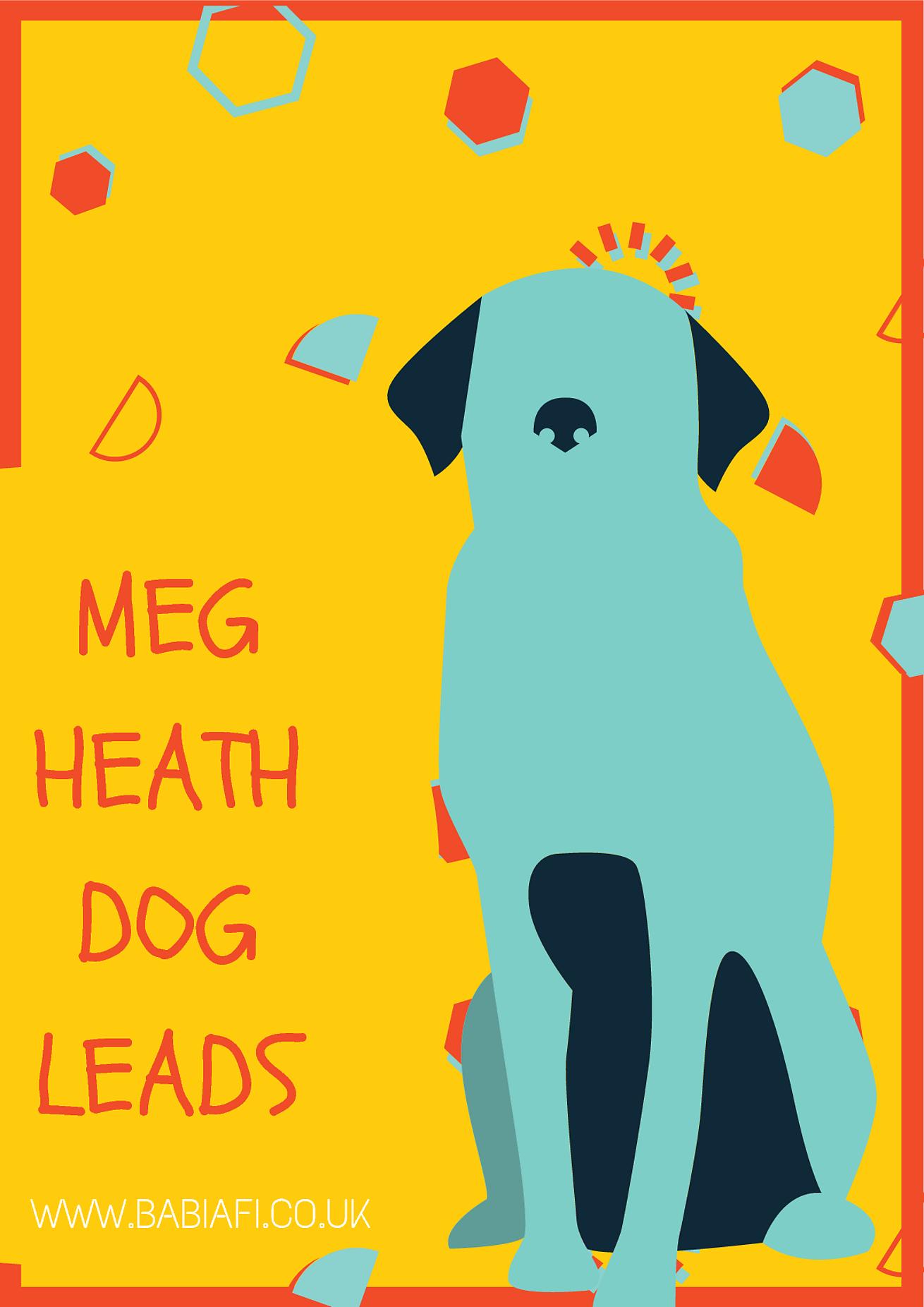 Meg Heath Dog Leads Review