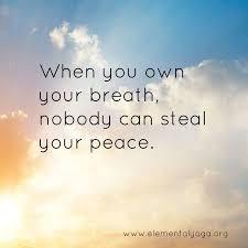 vivid spirit yoga