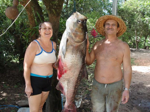 Carpa chinesa de 12 anos com 40 quilos foi pescada em açude no RS (Foto: Divulgação/Wylner César Fernandes Ribeiro)